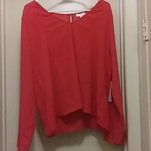 Womans sheer long sleeve by Leith Nwt
